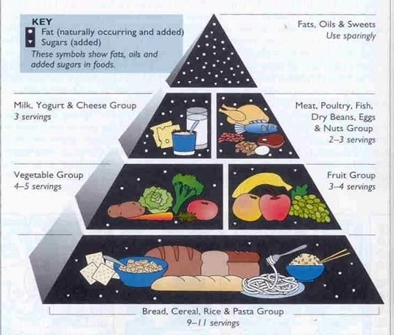 پاورپوینت بررسی تغذیه در سنین بلوغ و نوجوانی